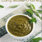 Curry leaves chutney without coconut