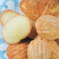 Gluten-Free French Lemon Madeleines (and a boost of blogging confidence)