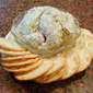 Smoked Fish and Mussel Dip!