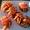 Tomatoes stuffed with pesto and prawns