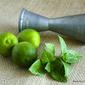 Blue Spice Basil and Key Lime Mojito