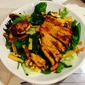 Grilled Chicken Tortilla Salad