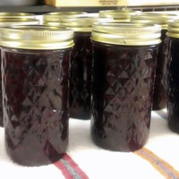 Winter Berry Jam With Texas Ruby Red Grapefruit