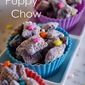Fairy Puppy Chow