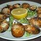 Mussels with tomato sauce and parmesan