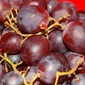 Fruit and Your Health - Part 2 - Grapes