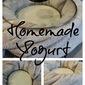 DIY: Homemade Yogurt