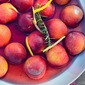 Summer Recipe: Poached Peaches in White Wine & Rosemary