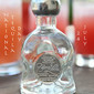 Frozen Watermelon Margaritas in Celebration of National Tequila Day!