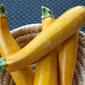 Paleo Faileo ~ Yellow Zucchini Recipe Attempt