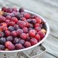 Beach Plum Jelly