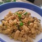 Rotini Pasta with Roasted Butternut Squash Sauce