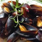 Mussels in White Wine and Garlic Butter Sauce
