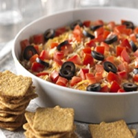 Tex-Mex Chicken Dip