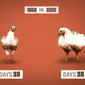 Food Expert Michael Pollan's Food Rules – Video – Oprah.com