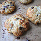 Smitten's Chocolate Chip Scones