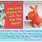 Easter Candy Crafts made with Surf Sweets Organic non GMO Candy