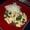 Chicken and Basil Stir Fry