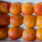 Sunny poached apricots