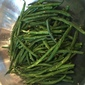 Lemon & Garlic Green Beans