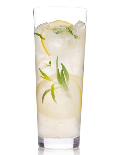 Gin Fizz Lemonade Twist