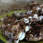 Chocolate – Cranberry Granola Bars