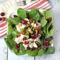 Turkey Cranberry Pecan Spinach Salad