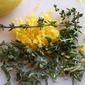 Brined Lemon-Herb Chicken