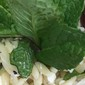 Orzo, Chicken & Grape Salad with Feta & Mint