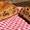 Bread Maker Fruit Cake & Judge Digital Bread Maker Review