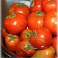 Scalloped Tomatoes with Herbs