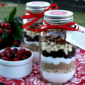 Winter Cranberry Cookie Mix {Gift Mixes in a Jar}
