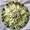 Kiwi Fruit Salad with Honey Orange Drizzle