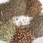 Recipe For Digestive Spice Blend