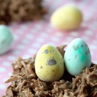 Easy No Bake Chocolate Coconut Nests