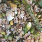 Toasted Farro & Asparagus Salad