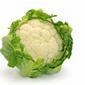List of Best Weight Loss Foods - Part 7
