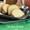 Maple Bundt Cake with Cinnamon Glaze #BundtBakers