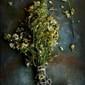 Sohjne Phuler Bora / Moringa Flowers Fritters – a Gluten Free Spring Recipe
