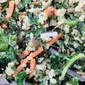 Kale & Quinoa Salad with Lemon Garlic Dressing