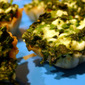 Holiday Recipe: Mini Spanakopita Cups