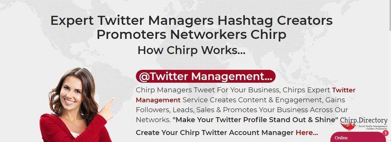 Twitter Management. Gain Twitter Exposure, Traffic Leads & Sales