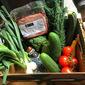Recipe: Enchiladas with Seasonal Roots