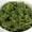 Herb Sauce | Salsa Verde | Salsa Verte