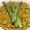 Asparagus Risotto | The Flexitarian Cookbook