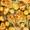 Rosemary Lemon Chicken and Potatoes (VIDEO)
