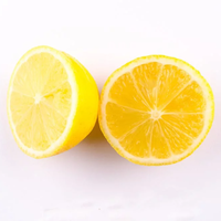 Chef Teddy lemon Glaze