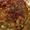 Juicy Skillet Chicken Thighs
