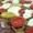 Caprese Pizza | Cheats Pizza Dough